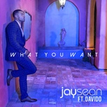 what you want (single) - jay sean, davido