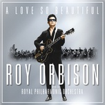 a love so beautiful: roy orbison & the royal philharmonic orchestra - roy orbison