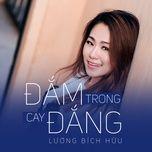 dam trong cay dang (single) - luong bich huu