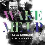 wake me up (remixes ep) - alex kunnari