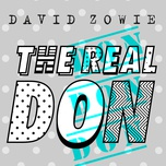 the real don (single) - david zowie