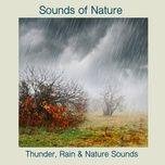 thunder, rain & nature sounds - sounds of nature