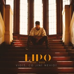 vidis, co jini nevidi (single) - lipo, odd