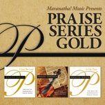 praise series gold - v.a