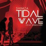 tidal wave (single) - dj shimza