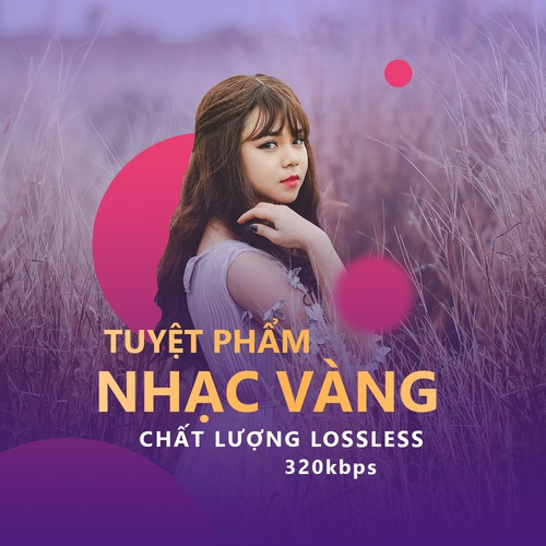 tuyet pham nhac vang - chat luong lossless, 320kbps - v.a