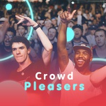 crowd pleasers - v.a