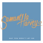 say you won't let go (single) - samantha harvey