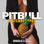 jungle (single) - pitbull, stereotypes, e-40, abraham mateo