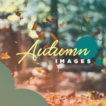 autumn images - v.a
