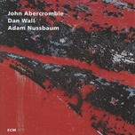 while we're young - john abercrombie, dan wall, adam nussbaum