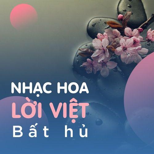 Nhạc Hoa Lời Việt Bất Hủ Hay Nhất