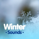winter sounds - v.a