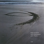 you never know - peter erskine, palle danielsson, john taylor