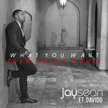 what you want (team salut remix) (single) - jay sean, davido, team salut
