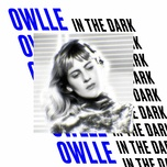 in the dark (single) - owlle