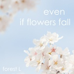 even if flowers fall (single) - forest l