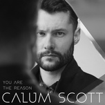 you are the reason (single) - calum scott