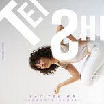 say you do (robokid remix) (single) - tei shi