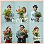 goose house phrase #16 egao no hana (single) - goose house