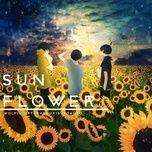 sunflower - wolpis kater, sou, isubokuro