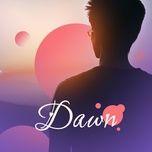 dawn - v.a