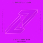 a different way (henry fong remix) (single) - dj snake, lauv