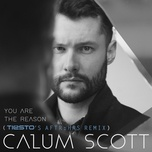 you are the reason (tiesto's aftr:hrs remix) (single) - calum scott