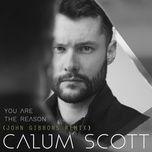you are the reason (john gibbons remix) (single) - calum scott