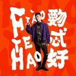 fiao te hao / 覅忒好 - ho ngan ban (tiger hu)