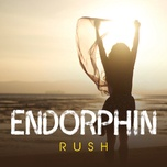 endorphin rush - v.a