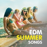 edm summer songs - v.a