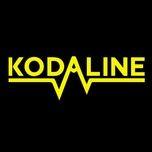 follow your fire (single) - kodaline