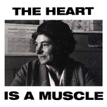 the heart is a muscle (radio edit) (single) - gang of youths