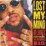 lost my mind (single) - ro james, the notorious b.i.g.