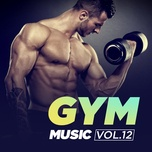 gym music (vol. 12) - v.a