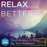 relax better (ep) - tom middleton