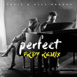 perfect (frdy remix) (single) - topic, ally brooke