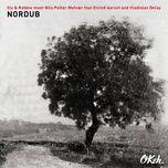 nordub - sly & robbie, nils petter molvaer, eivind aarset, vladislav delay