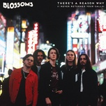 there's a reason why (i never returned your calls) (single) - blossoms