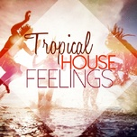 tropical house feelings - v.a
