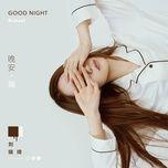 good night / 晚安琦 - luu thuy ky