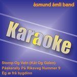 karaoke (single) - asmund amli band