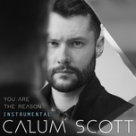 you are the reason (instrumental) (single) - calum scott