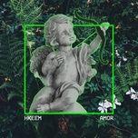 amor (single) - hkeem