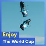 enjoy the world cup - v.a