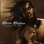 dressed to chill - marion meadows
