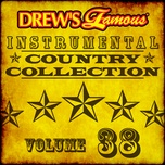 drew's famous instrumental country collection (vol. 38) - the hit crew