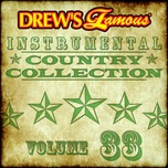 drew's famous instrumental country collection (vol. 33) - the hit crew