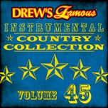 drew's famous instrumental country collection (vol. 45) - the hit crew